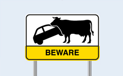 beware of cows road sign